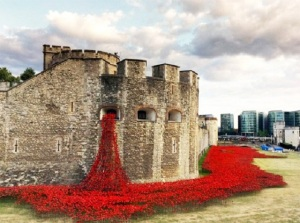 Ceramic-Poppies-Honor-Fallen-Veterans